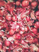 picture of red shallot  - Close up Image of Shallot  - JPG