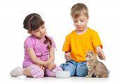 image of child feeding  - happy children feeding kitten isolated on white - JPG