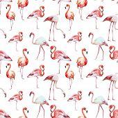 image of flamingo  - Beautiful vector watercolor pattern with nice flamingos - JPG