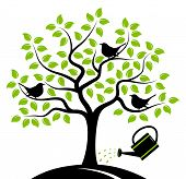 picture of water bird  - vector tree with birds and watering can isolated on white background - JPG