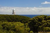 stock photo of lighthouse  - Top of the Cape Otway Lighthouse peeping out above the Green Bushes. The Blue Sea can be seen beside the Lighthouse. Lighthouse is at Cape Otway on the Great Ocean Road in Victoria Australia - JPG
