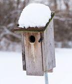 image of bluebird  - A Bluebird House after a recent snowfall - JPG