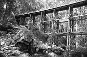 picture of trestle bridge  - The old Noojee trestle rail bridge in black and white - JPG