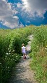 foto of tall grass  - Dark clouds in the dark blue sky a narrow path among the tall grass the path goes to his house a little girl - JPG