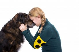 foto of groping  - A blind woman is touching her guide dog and cuddles with him - JPG