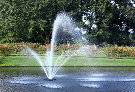 picture of squirt  - water fountain in the middle of a pond - JPG