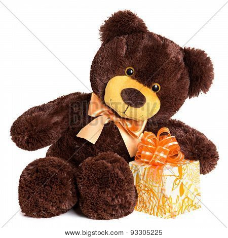 Cute Shaggy Smiling Teddy Bear With Gift
