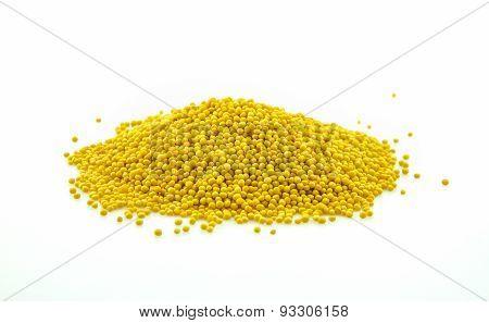Mustard Seeds On White Background.