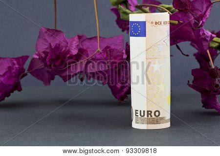 Euro Currency In Front Of Red  Bougainvillea On Gray Background