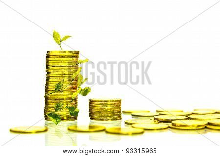 The Coin Gold Color On White Isolate Background.