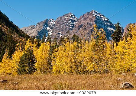 The Maroon Bells With Aspen Gold