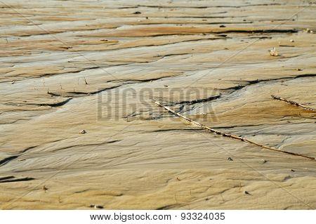 Low Tide Textures
