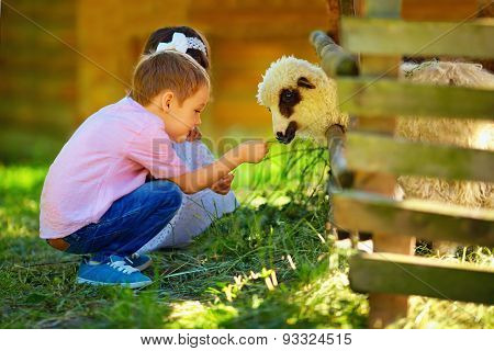 Cute Kids Feeding Lamb With Grass, Countryside