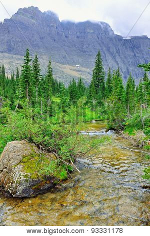 Alpine Stream By The Iceberg Lake Glacier In Glacier National Park