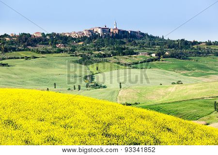 Spring Landscape Of Fields Tuscany