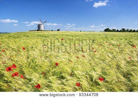 Windmill And Wheat Field