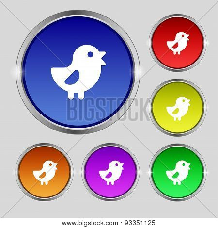 Chicken, Bird Icon Sign. Round Symbol On Bright Colourful Buttons. Vector