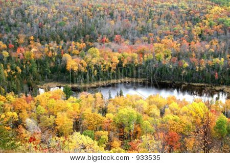 Autumn Trees Around Small Lake