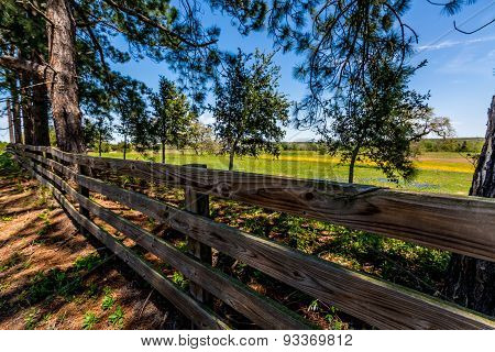 Old Wooden Fence in Texas in Front of a Field of Wildflowers
