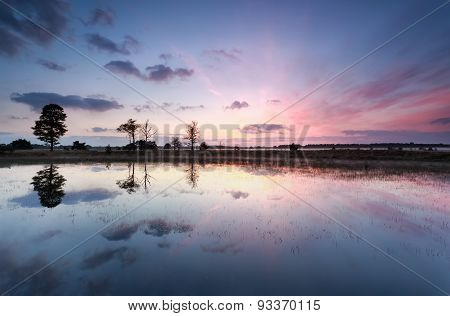 Purple Sunrise Reflections In Lake
