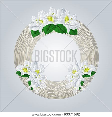 Wreath With White Rhododendrons Vector