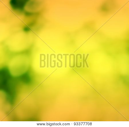 Summer Natural Green Blurred Background. Blurred Nature Background With Bright Sunlight. Spring Back