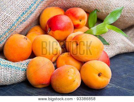 Fresh Apricots On Burlap Sack On Wood