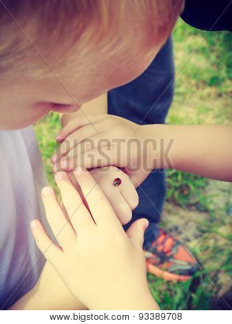 Ladybug On Human Finger Hand.