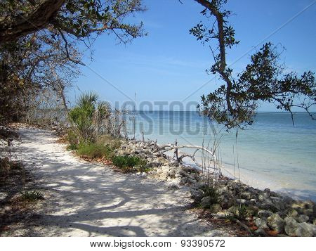 Quiet Florida Beach