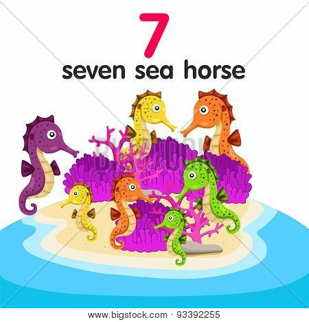 Illustrator of seven sea horse