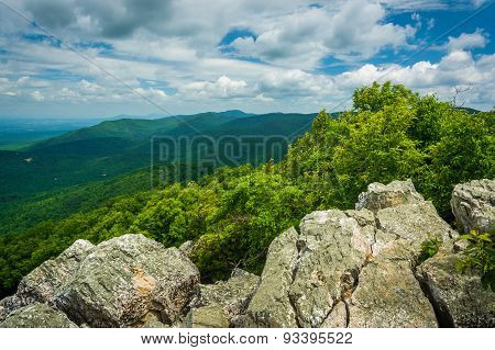 View Of The Blue Ridge Mountains From Turk Mountain In Shenandoah National Park, Virginia.