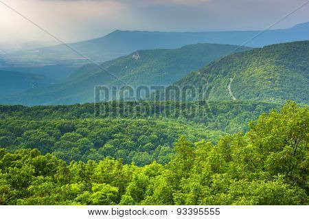 View Of The Blue Ridge Mountains From Loft Mountain In Shenandoah National Park, Virginia.