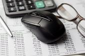 picture of field mouse  - Close up of Accounting report with narrow depth of field  - JPG