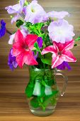 stock photo of petunia  - Colorful petunia blooms in a glass pitcher