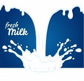 image of milk products  - Milk - JPG
