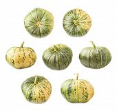 picture of foreshortening  - Green pumpkin isolated over the white background - JPG