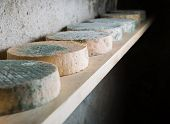 foto of basement  - Goat cheese maturing in basement. Studio shoot with mystic light efect. ** Note: Shallow depth of field - JPG