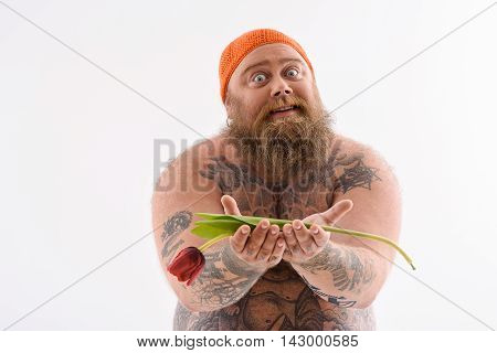 Cheerful fat man is holding tulip and stretching it forward as gift. He is standing and looking at camera with hope. Isolated