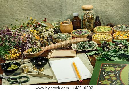 Set healing herbs. Dried herbs for use in alternative medicine. Herbal medicine phytotherapy medicinal herbs. For preparation of infusions decoctions tinctures powders ointments tea.