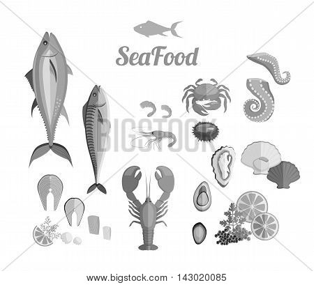 Seafood set design flat fish and crab. Lobster and food oyster, fresh seafood, shrimp and menu octopus animal, shellfish lemon, fresh seafood vector illustration