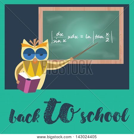 Owl teacher holding pointer and book at blackboard. Mathematical expression is on board. Back to school. Vector illustration.