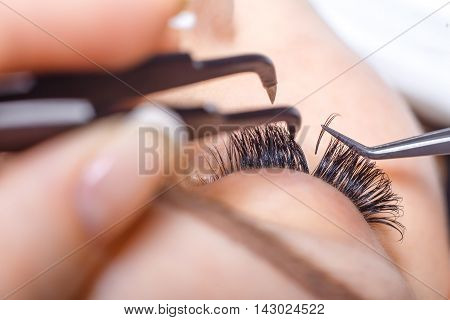 Eyelash Extension Procedure. Woman Eye with Long Eyelashes. Lashes. Close up, macro, selective focus