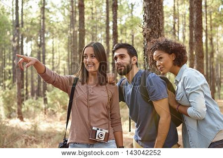 Friends Looking At Something In A Forest