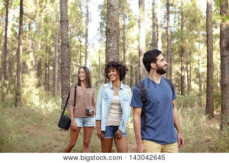 Laughing Happy Friends In A Forest
