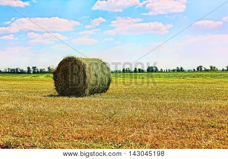 Golden stubble field and hay bale against azure cloudy sky.Toned image.