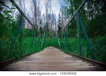 Wooden bridge over the river. Bridge goes to the heart of the forest. The bridge in the forest