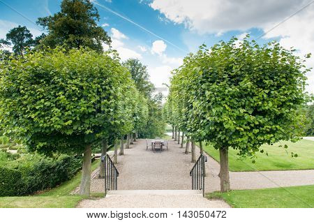 Formal Garden Entrance With Shaped Hedges And Trees