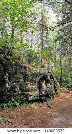 A Large Rock Along an Algonquin Park Trail