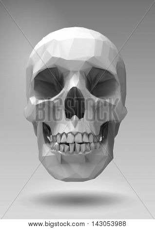 Low poly vector skull in 3d realistic render look