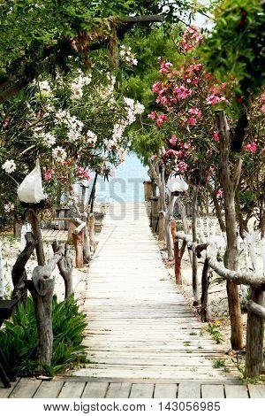 Wooden walkway to the sea among oleander and Lantern